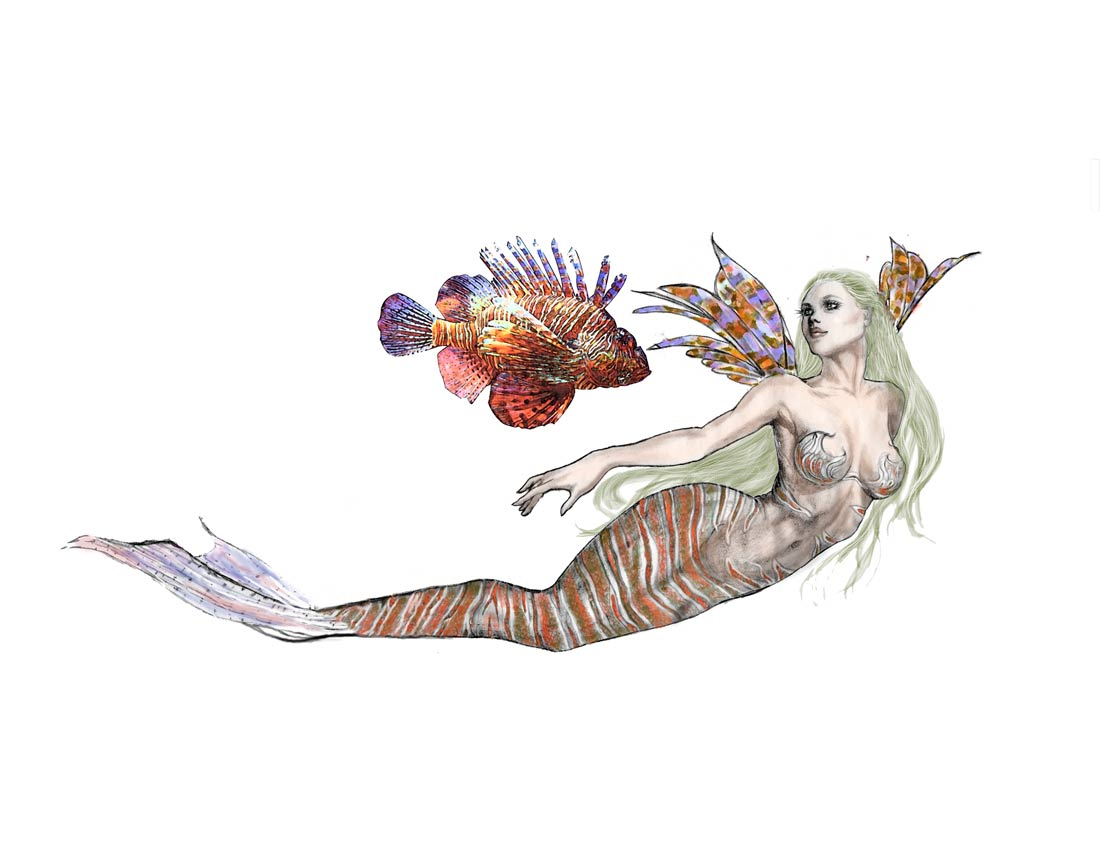 Tiger Fish Mermaid by Cindy McClure